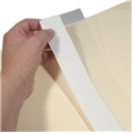 "Folder Repair Strips  2""H x 11""W"